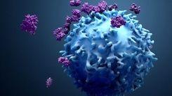 خبر بد: وضعیت قرمز ویروس کرونا به این زودیها تمام نمیشود