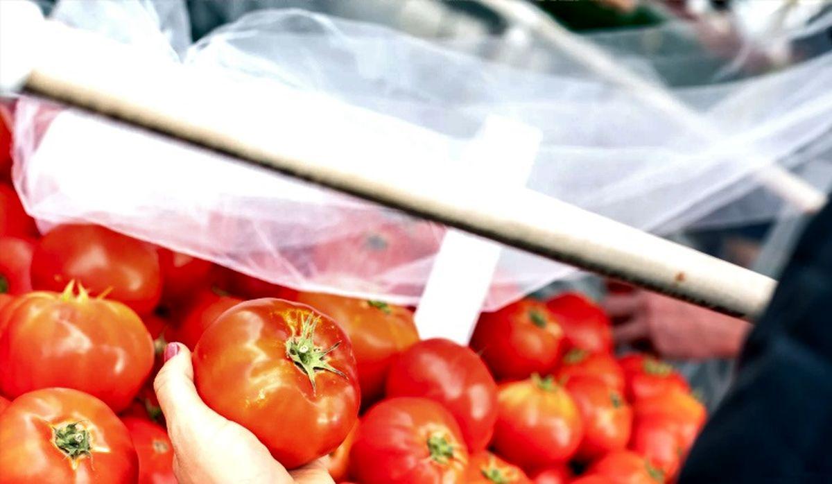 قیمت گوجه در بازار بالا رفت  ممنوعیت ثبت سفارش موز
