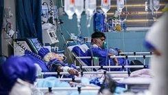 خبر جدید درباره ویروس لامبادا در ایران