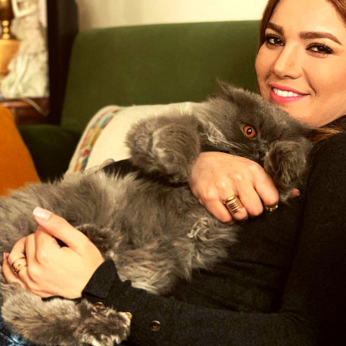 عکس جدید متین ستوده در کنار همسرش در طبیعت گردی / سلفی متین ستوده