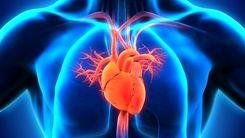 یک وعده سوسیس کالباس هم به سلامت قلب آسیب می رساند ! + جزئیات مهم