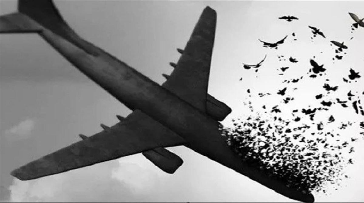 افشای جزییات جدید از سقوط هواپیمای اوکراینی