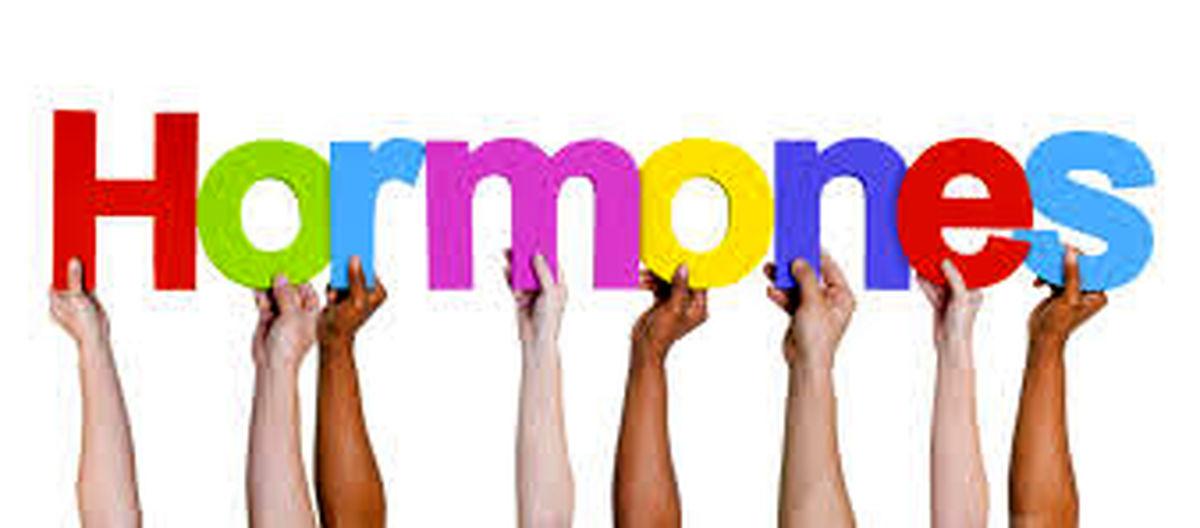 هورمون اکسی توسین چیست/ عملکرد هورمون ها در احساسات مختلف
